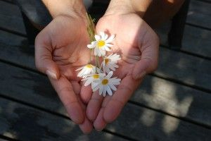 The importance of Forgiveness - an important Guest Blog Post on