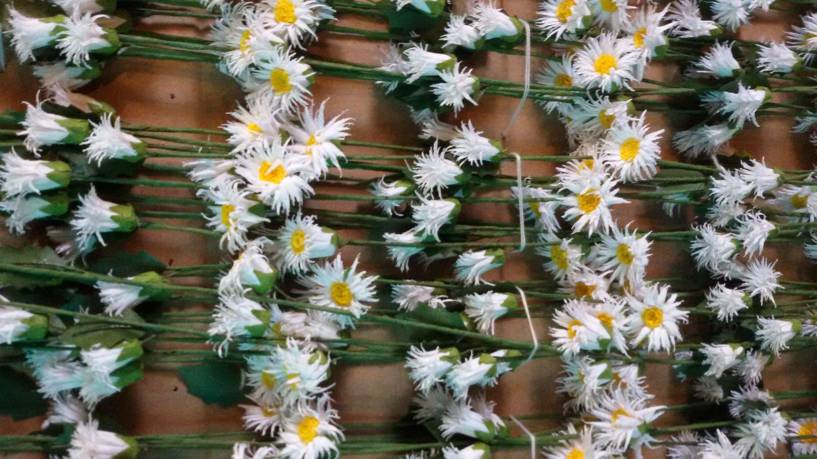 3ft silk plastic flower daisy garland whitehead dresswedding 3ft silk plastic flower daisy garland whitehead dressweddingdecoration x 10 junglespirit Choice Image