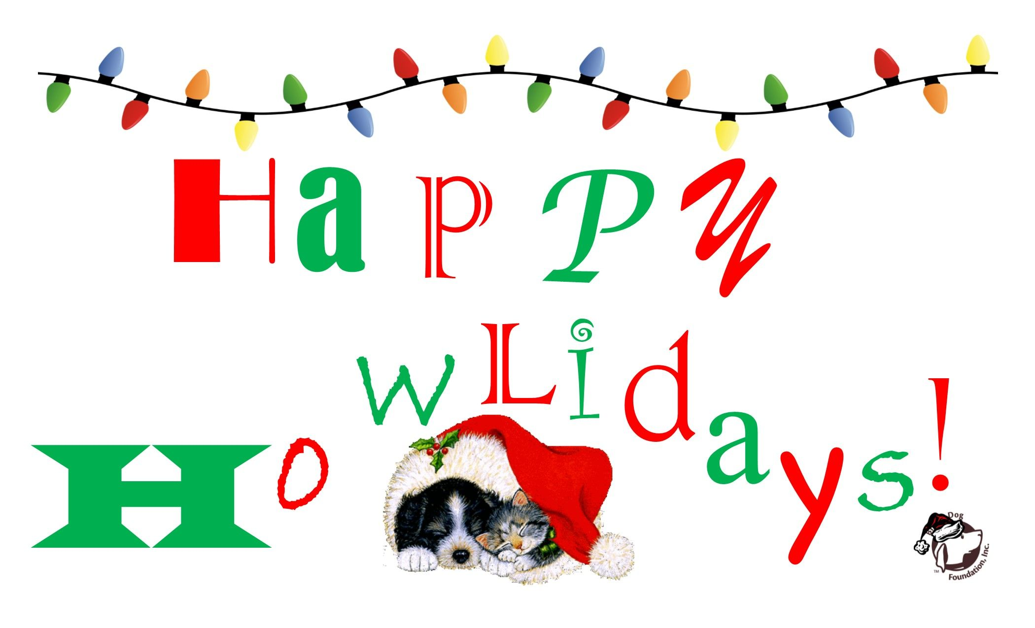 Pin by Lucy the Rescue Dog Inc on National nonprofit help