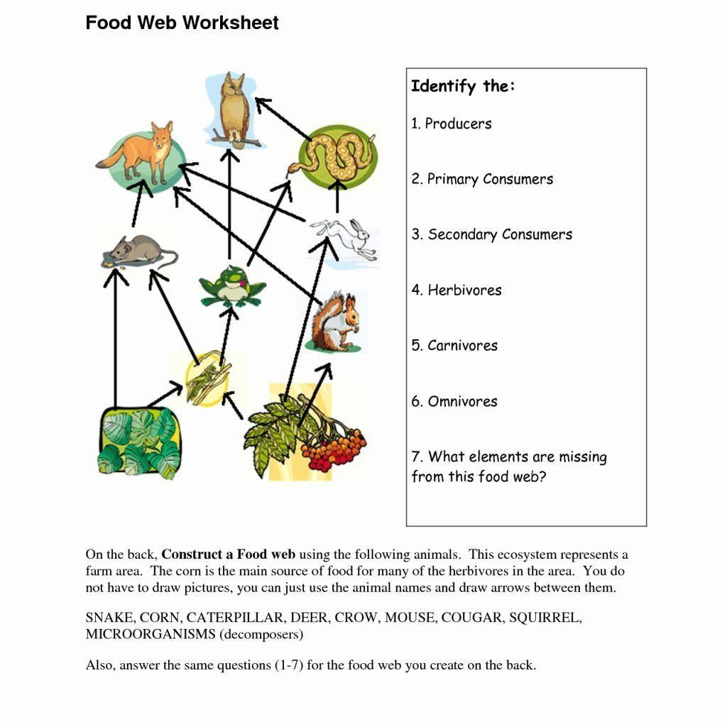 Food Web Worksheet Answer Key Accounting Worksheet Food In 2020 Food Web Worksheet Food Web Worksheets