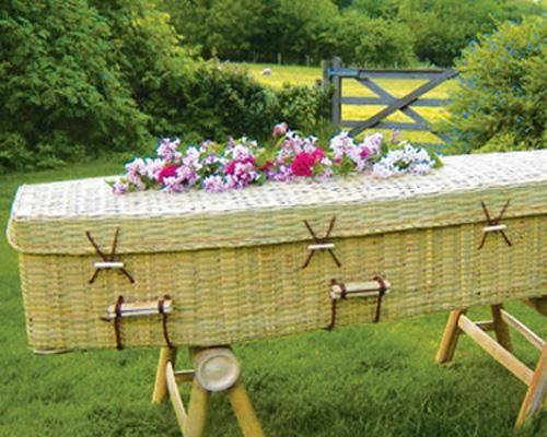 15 bizarre green inventions | Eco | Green funeral, Casket