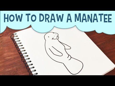 Learn How To Draw A Manatee Cartoon Easy Step By Step Manatee