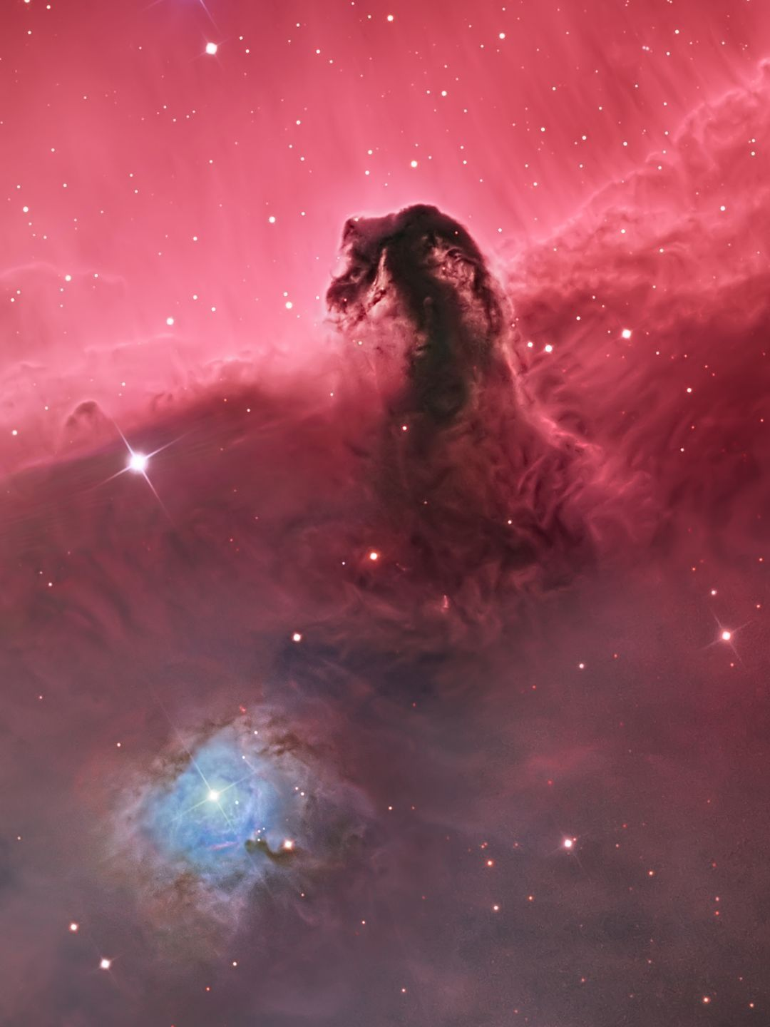 American photographer Bill Snyder won the Deep Space category for his image of the Horsehead Nebula IC 434.