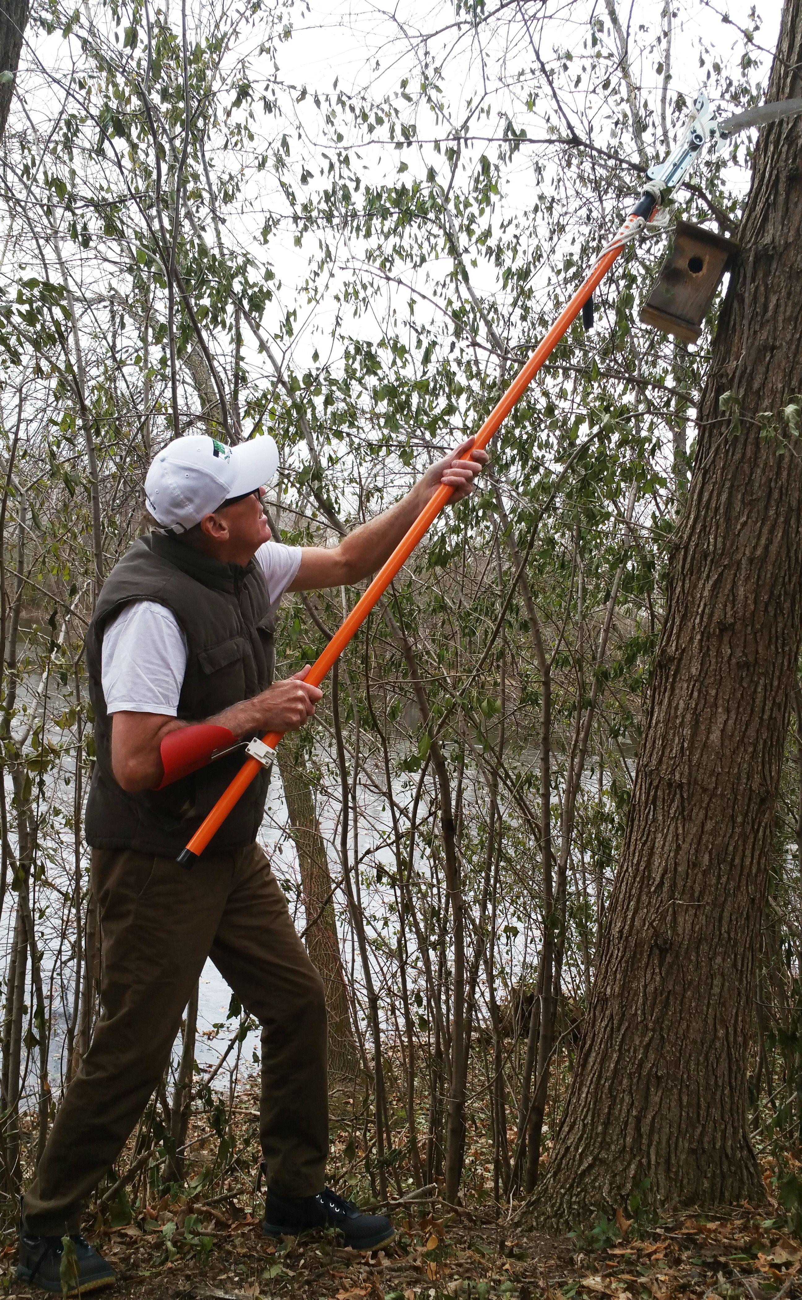 limb walkers tree service on 11 tree care arborists ideas tree care pole saw arborist 11 tree care arborists ideas tree