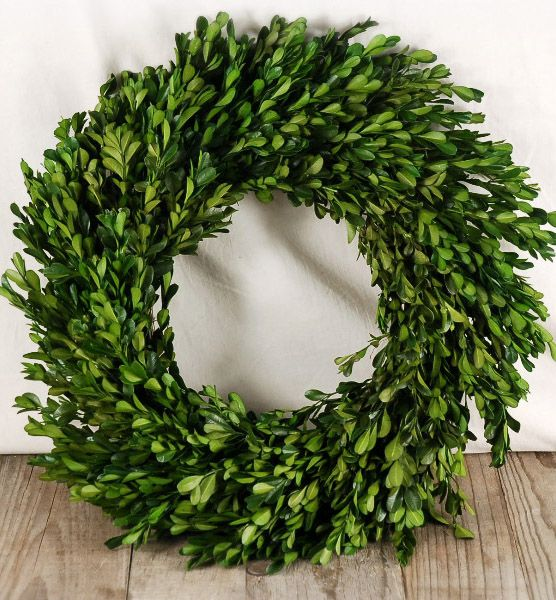 Natural Preserved Round Boxwood Wreath 16in Color