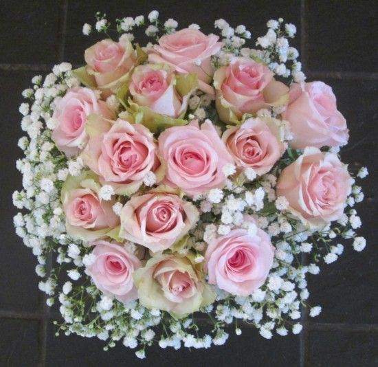 roses flowers gypsophila flower - photo #23