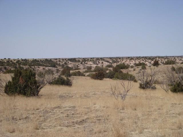 Homesite Lot Near Palo Duro Canyon Type:AcreageAcres:47.53 Address:City:AmarilloState:Texas Zip:79118Price: $278,500.00