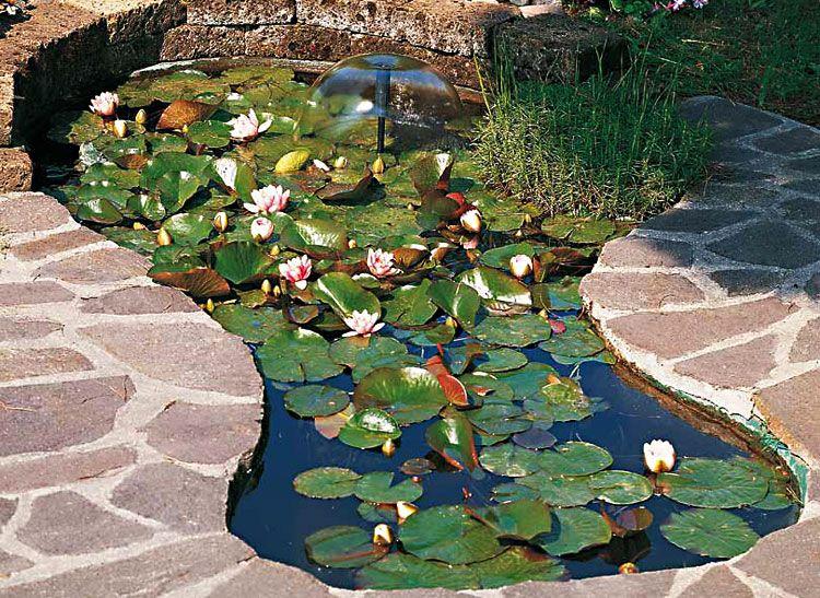 Laghetto laguna in vetroresina laghetti da giardino for Vasche x laghetti