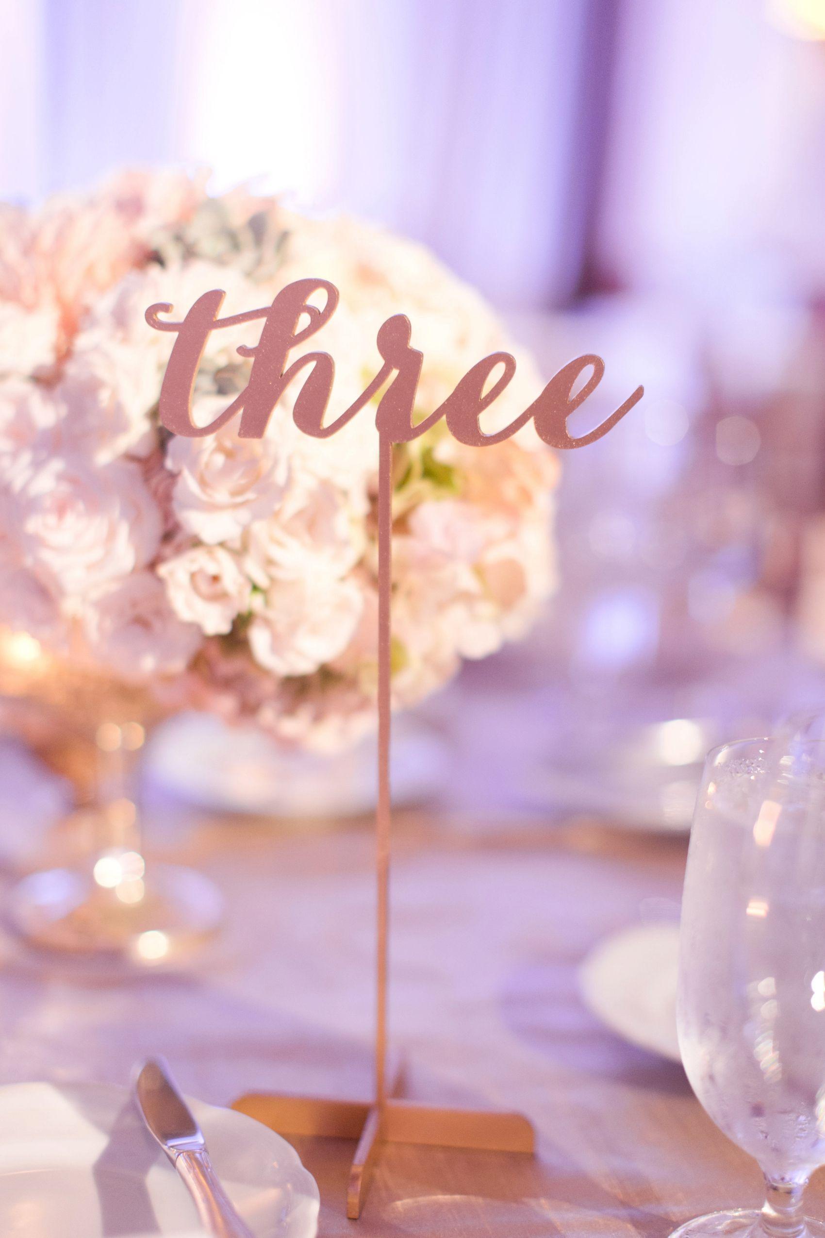 See through corset wedding dresses  romantic Four Seasons Scottsdale Wedding  Corset wedding dresses