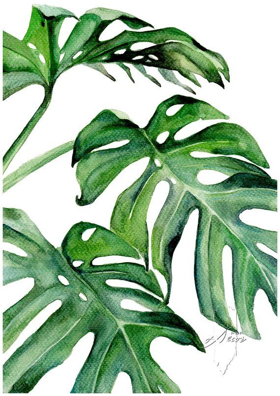 Tropical Leaves Set Set Of 3 Leaves Prints Set Of 3 Wall Art Tropical Print Watercolor Leaves Leaves Print Wall Art Art Prints Art Watercolor Leaves Tropical Leaves Art Prints For Home