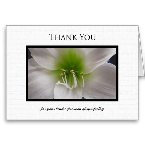 Sympathy Thank You Note Card  White Amaryllis  Thank You Funeral