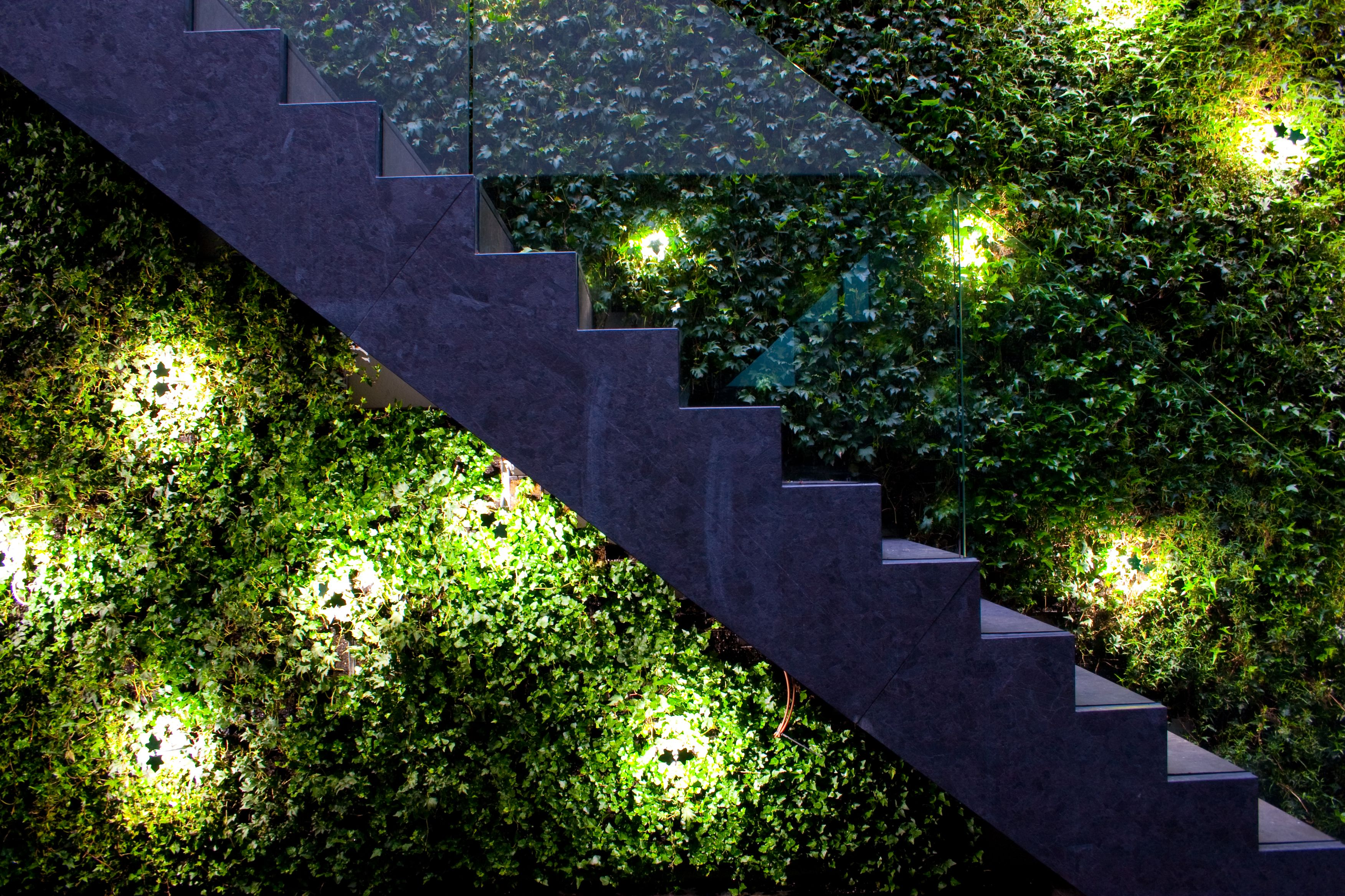 Bowles and Wyer, stairs, green wall, garden lighting