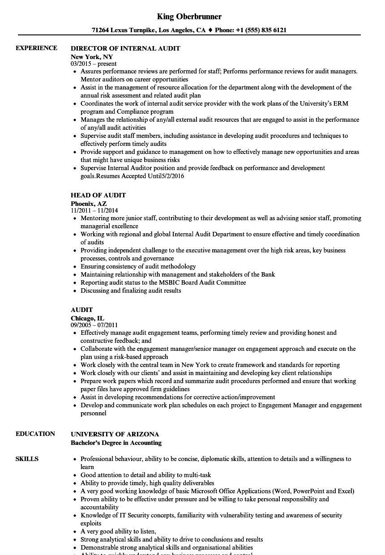 Audit Resume Samples Velvet Jobs in Data Center Audit