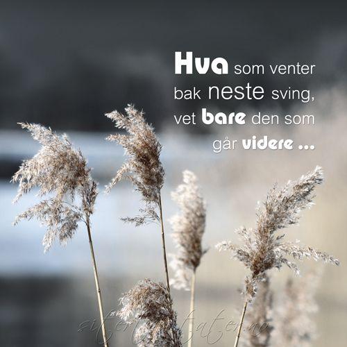 Livet Er En Reise Hva Som Venter Bak Neste Sving Vet Bare Den Som Gar Videre Positive Sitater Ordtak Morsomme Sitater