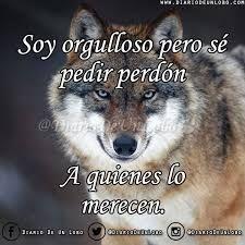 Resultado De Imagen Para Lobos Frases Animales Y Animalitos