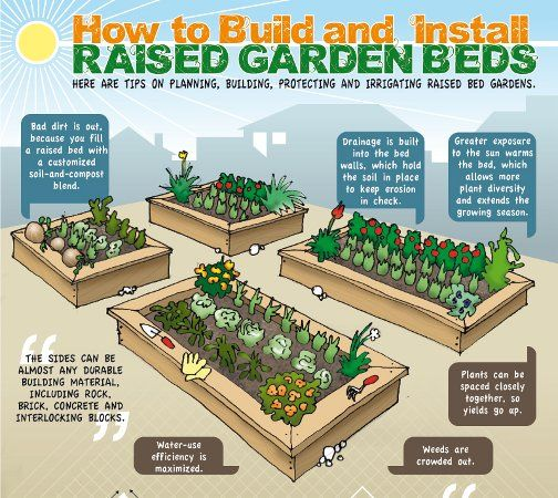 Vegetable Raised Garden Bed Plans Make Your Own Raised