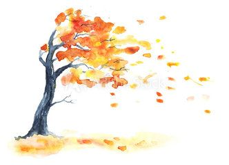 Watercolor Autumn Tree With Yellow And Orange Leaves Leaf Fall