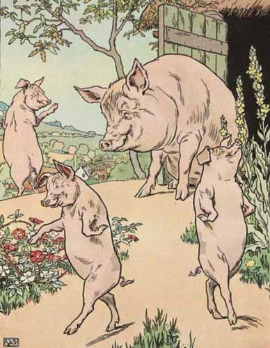 Original Illustration of Three Little Pigs bedtime story  Cu
