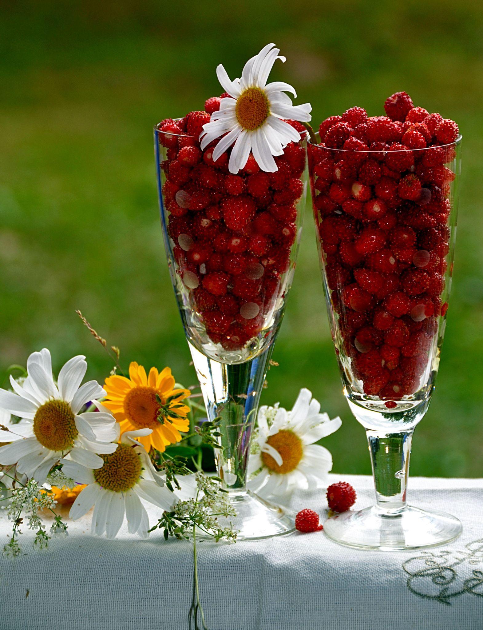 есть доброе утро открытки ягоды чуткий дружелюбный характер