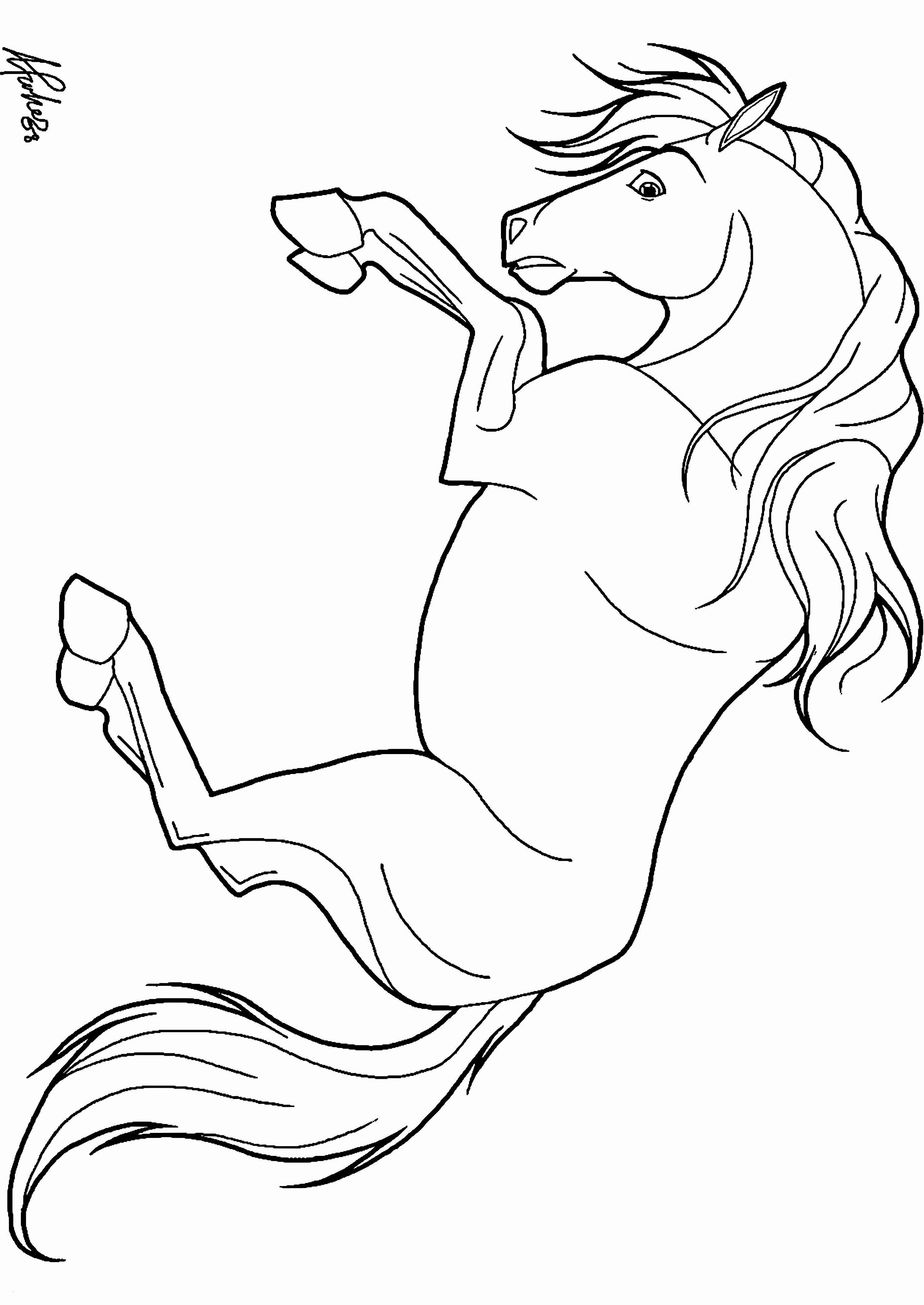 Unique Ausmalbild Pferd Mit Fohlen  Ausmalbilder pferde