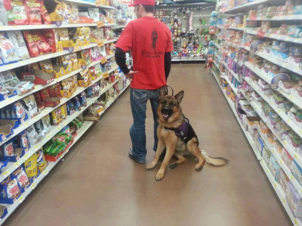 Proper Service Dog Etiquette The Battle Buddy Foundation