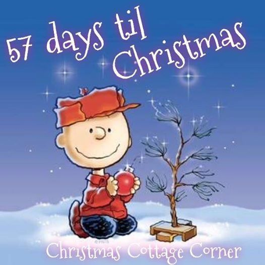 57 days til christmas quotes quote charlie brown christmas christmas quotes christmas countdown - Peanuts Christmas Quotes