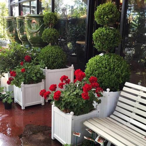 Versailles Style Planters | Gorgeous gardens, Commercial ...