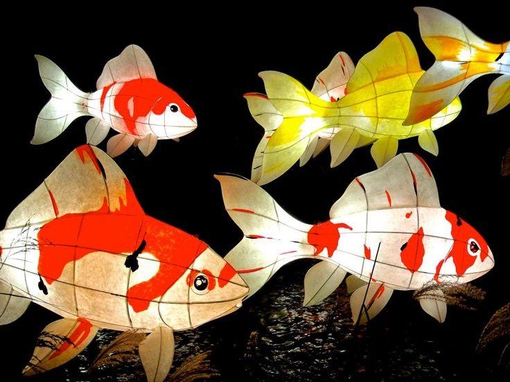 b235fcca4de8 1000+ ideas about Lantern Festival on Pinterest