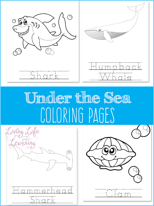 Free Under The Sea Coloring Pages Under The Sea Beach