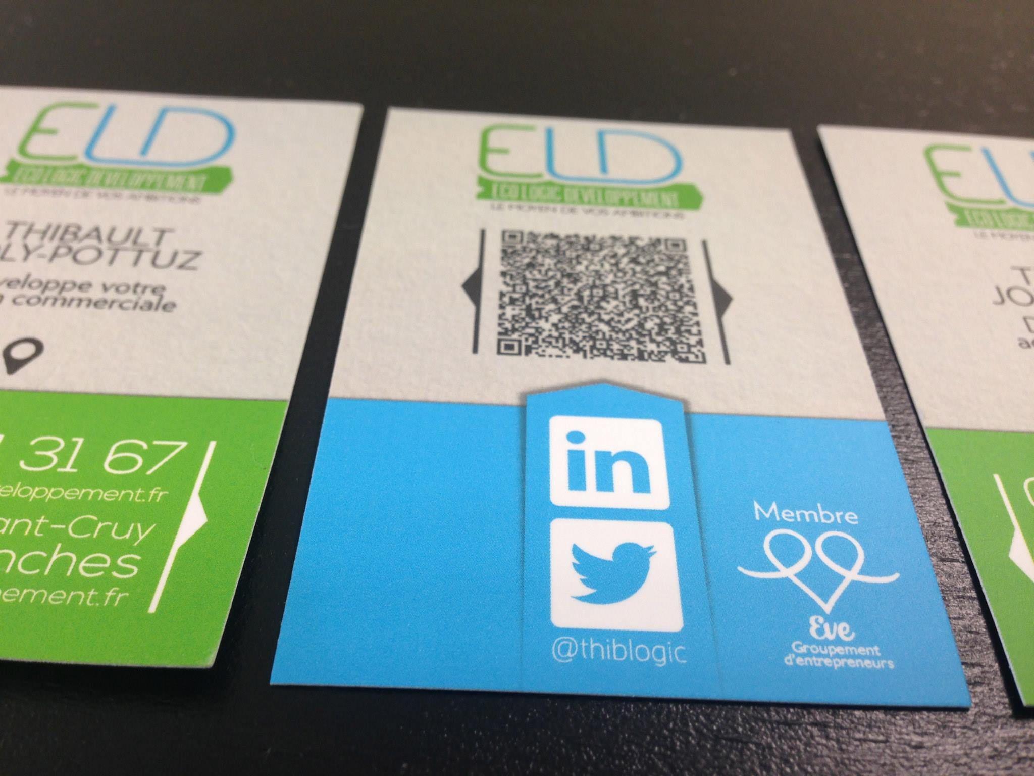 Logo Et Carte De Visite Pour Eco Logic Developpement Une Entreprise Qui Aide Ses Homologues A Se Developper Commercialement