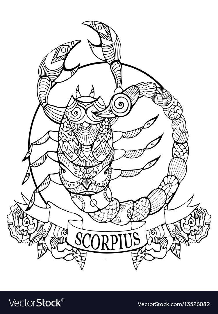 Scorpio Zodiac Sign Coloring Book Vector Image On Mandala