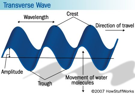 Transverse Waves   All about waves   Pinterest   Physical science ...