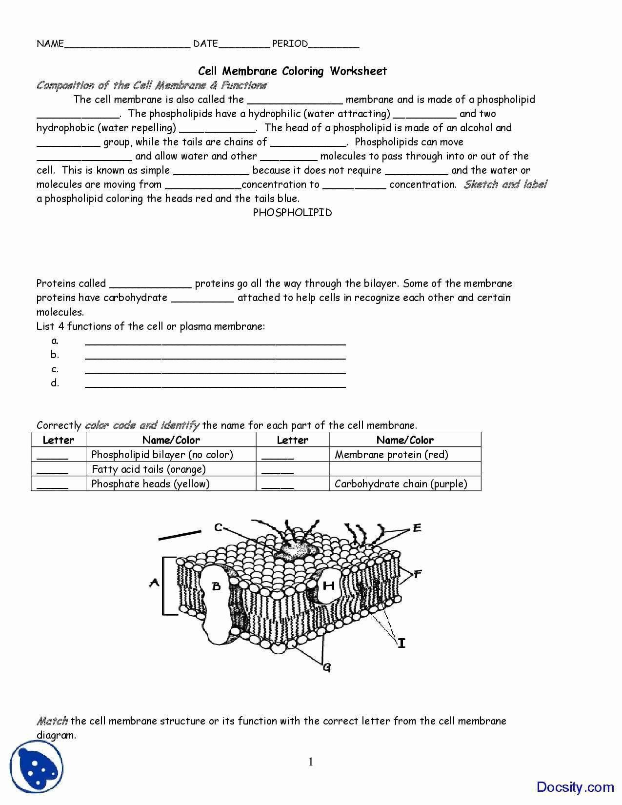 Cell Membrane Coloring Worksheet Luxury Cell Membrane
