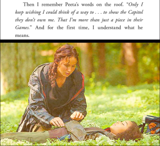 """Then I remember Peeta's words on the roof...And for the first time, I understand what he means."""