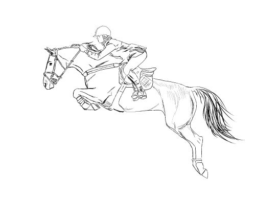 horse jumping drawing - Google Search | Horses | Pinterest ...