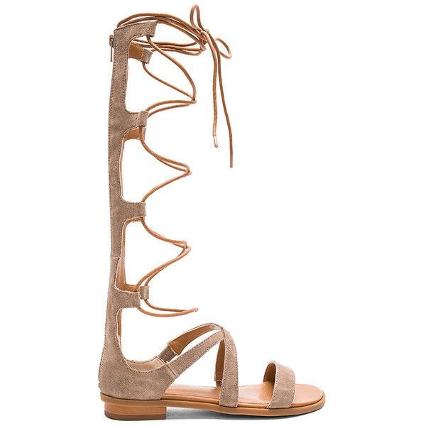 Seychelles Enterprise Sandal ($120) ❤ liked on Polyvore featuring shoes, sandals, seychelles, lace-up sandals, seychelles shoes, laced shoes and synthetic shoes
