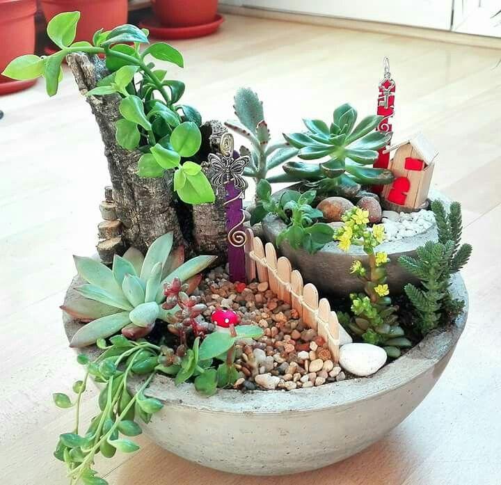 48+ Jardines de suculentas trends