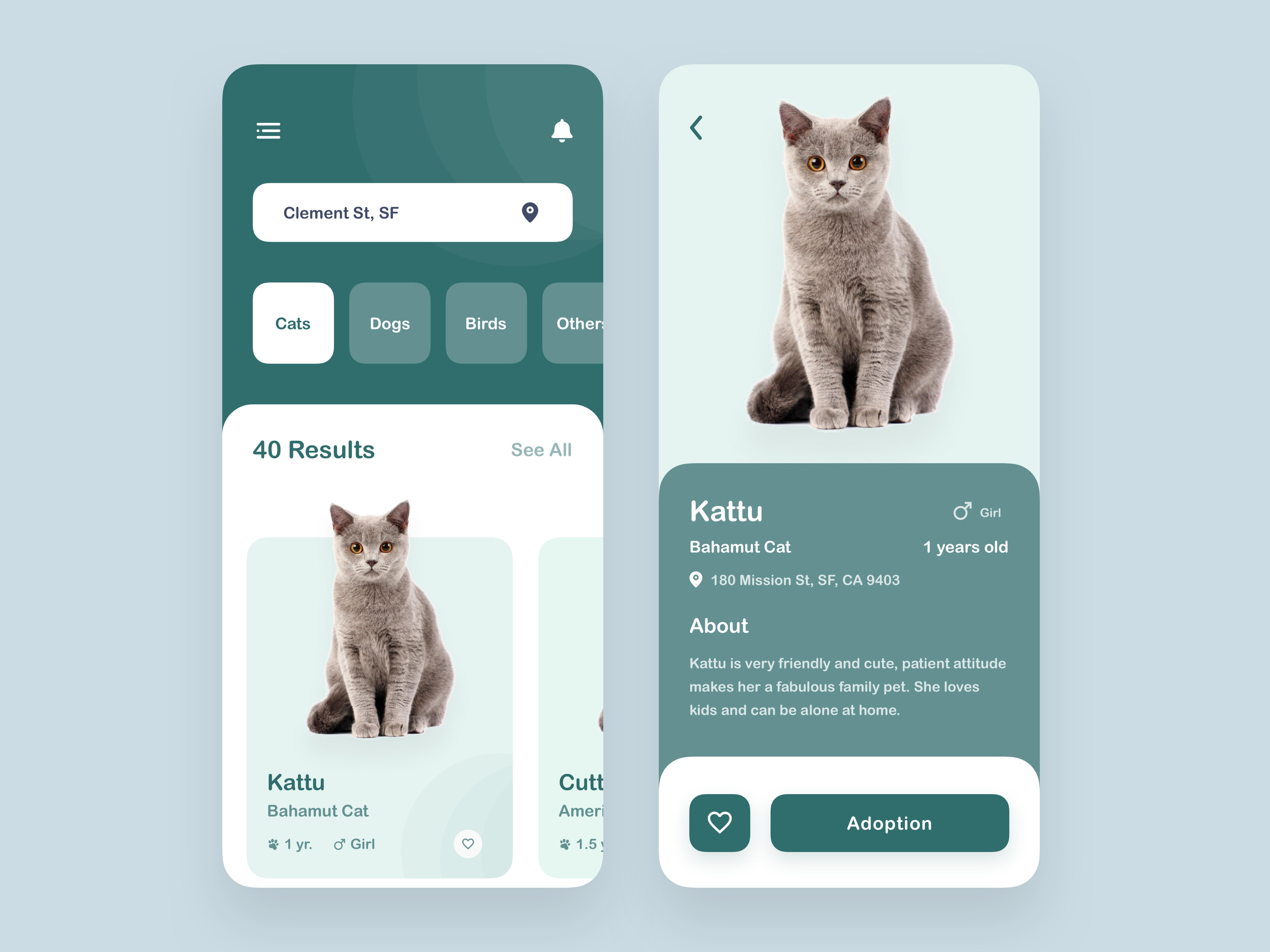 Pet Adoption App Pet Adoption Cat Adoption App Design Inspiration