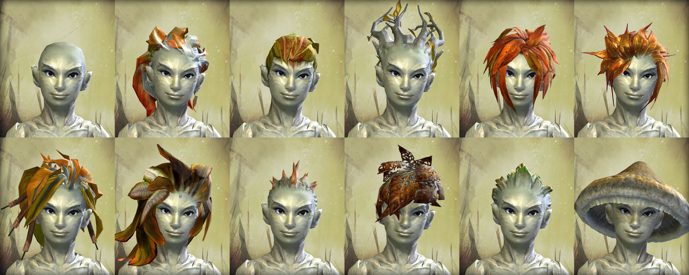 Pin By Shannon Leahy On Gw2 Shoot Guild Wars Womens Hairstyles Hair Styles