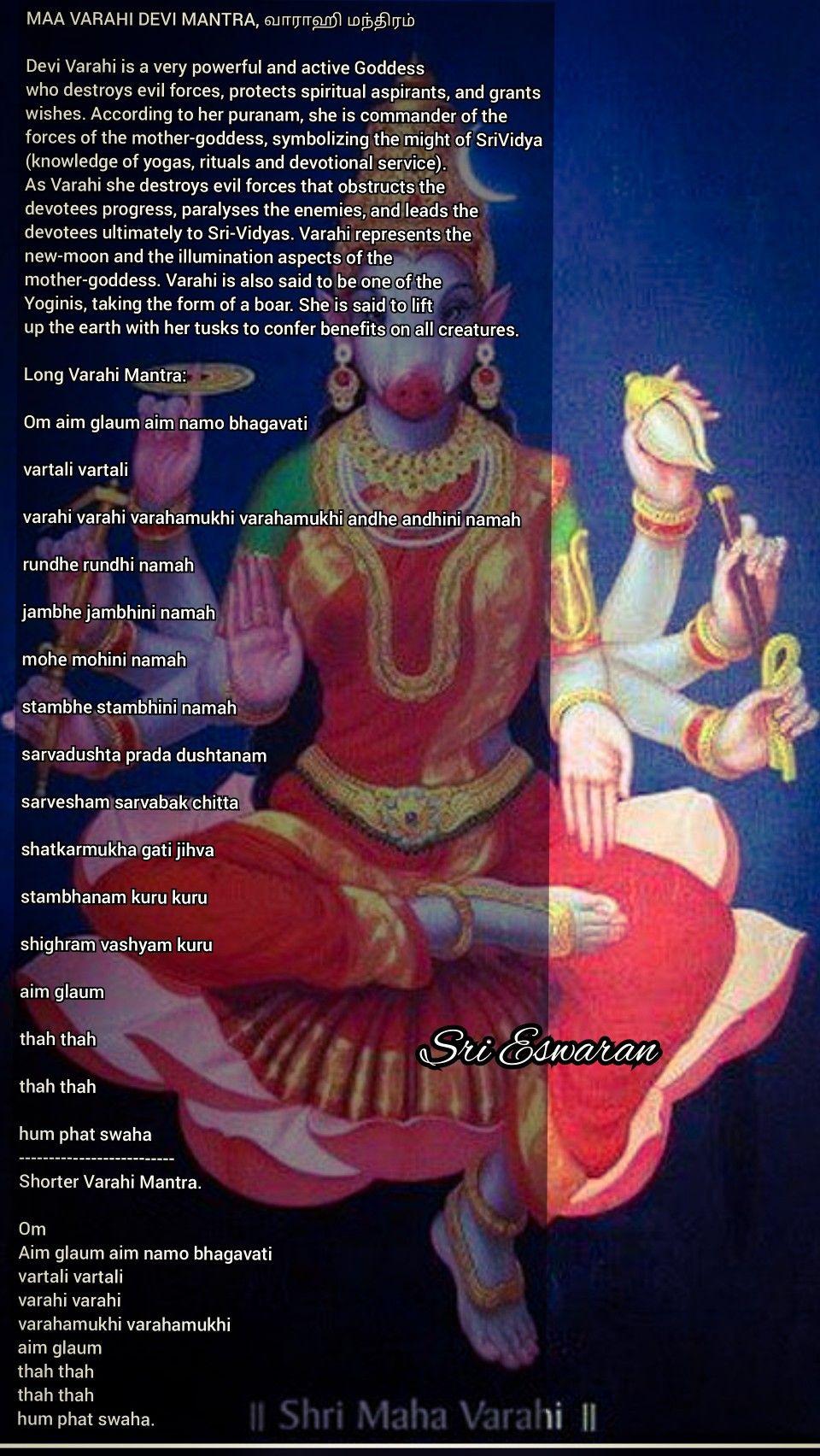 MAA VARAHI DEVI MANTRA, வாராஹி மந்திரம் Devi Varahi is