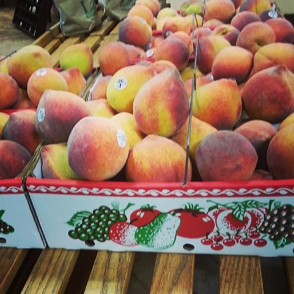 Pick apples, drink wine and feast on peach ice cream at these #Georgia agritourism attractions!
