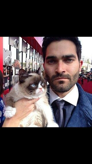 Who is the grumpy cat?