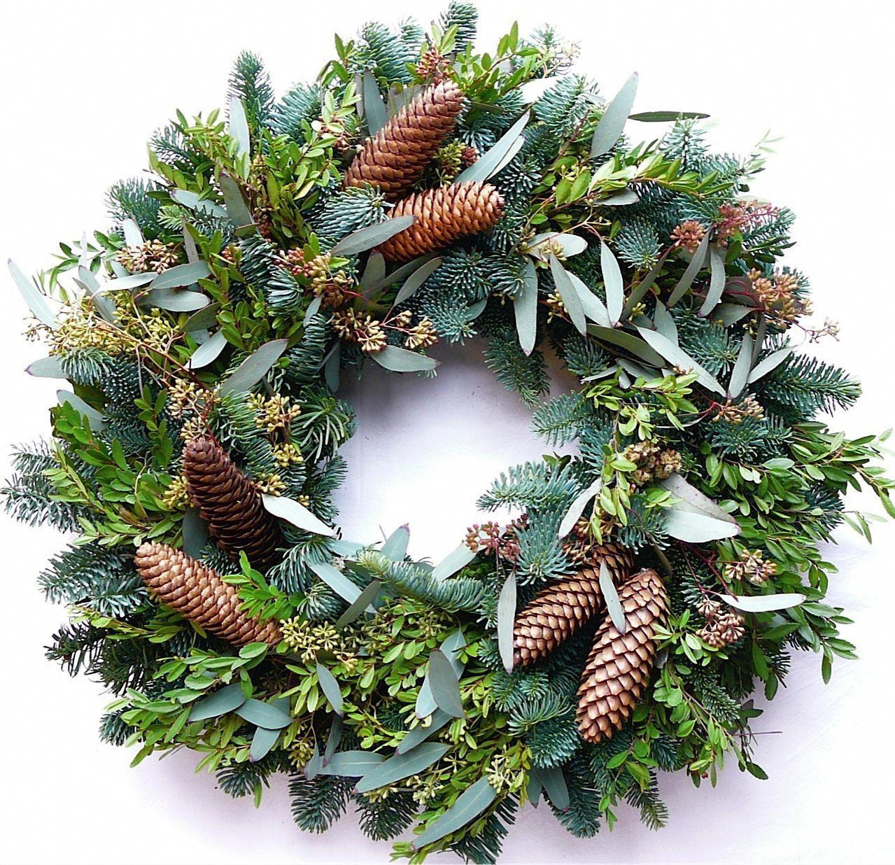 Christmas Roblox Id.Christmas Tree Farms Near Boone Nc Christmas Music Roblox Id
