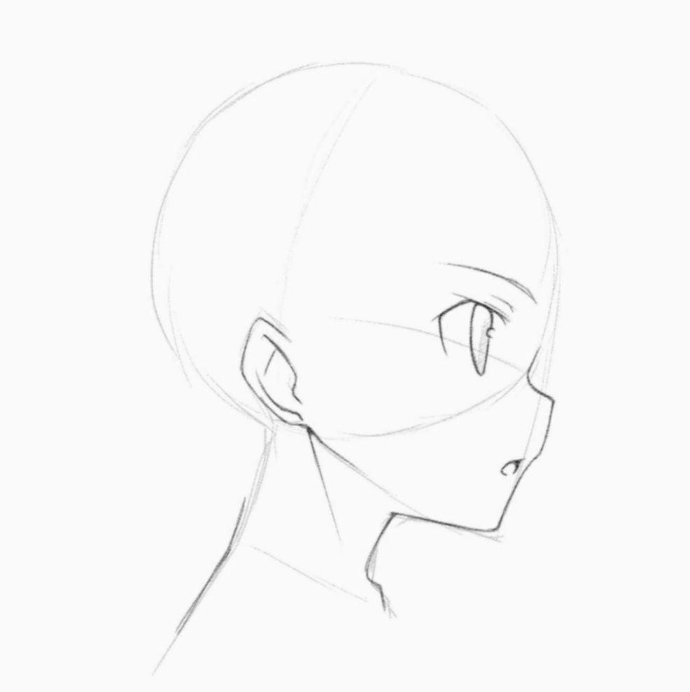 20 Anime Face Tutorial Side Face Side View Drawing Side View Of Face Side View Drawing