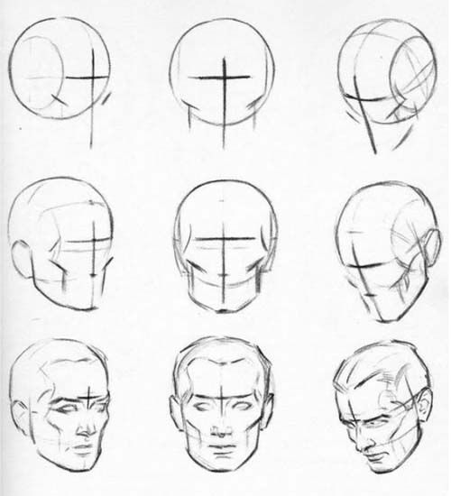 anatomical drawings of heads | Patrick\'s Free Art Course – Lesson 04 ...