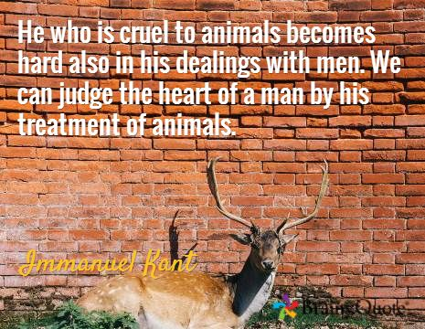 He who is cruel to animals becomes hard also in his dealings with men. We can judge the heart of a man by his treatment of animals. / Immanuel Kant