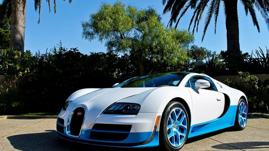 Vitesse Bugatti Veyron White Wallpaper Download Full Hd Quality Bugatti Veyron Vitesse Bugatti Veyron Bugatti