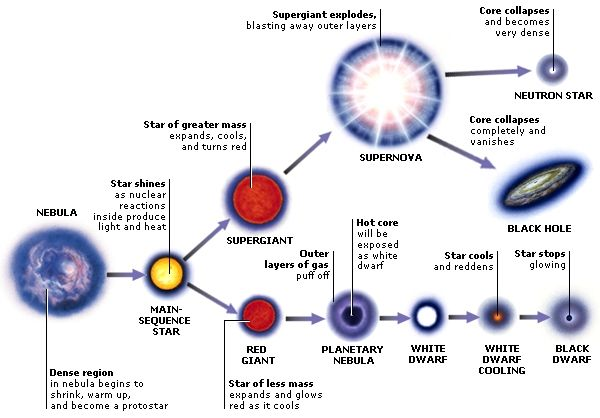 life cycle of a star and the different paths it can take outer