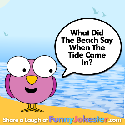 Long time, no sea! | Make Someone Laugh Today | Funny ...