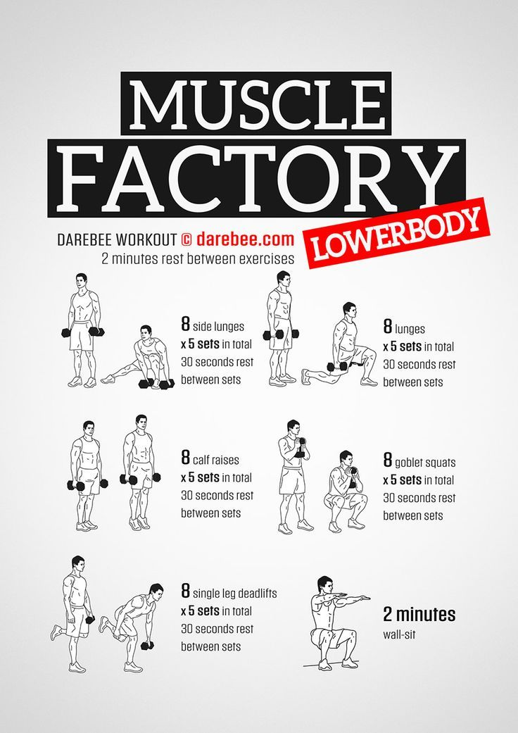 Muscle Factory Lowerbody - Dumbbell - Ideas of Dumbbell #Dumbbell - Muscle Factory Lowerbody #dumbbellworkout